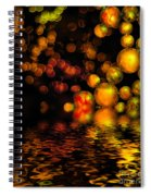 All That Glitters Is Gold Spiral Notebook