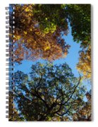 All The Trees Of The Forest Spiral Notebook