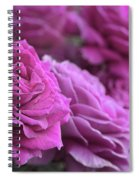 All The Violet Roses Spiral Notebook