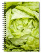 All The Year Round Spiral Notebook