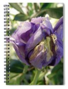All Things Purple Spiral Notebook