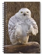 All Turned Around  Spiral Notebook