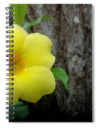Allamanda #2 Spiral Notebook