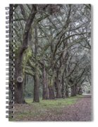 Allee Of Oak Tree's Spiral Notebook