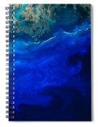 Allgal Bloom Of A Coastline Spiral Notebook