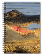 Alligator's  Mouth Spiral Notebook