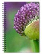 Allium Blooming Spiral Notebook