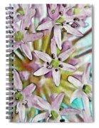 Allium Globe Spiral Notebook