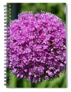 Allium Globe Spiral Notebook