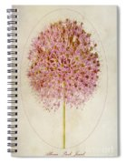 Allium Pink Jewel Spiral Notebook