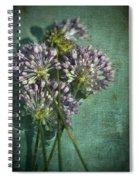 Allium Wildflower With Grunge Textures Spiral Notebook