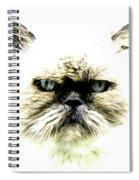 'allo Kitty Spiral Notebook