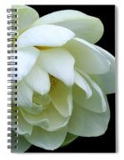 Alluring Lotus Spiral Notebook