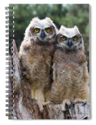 Ally And Olly Spiral Notebook