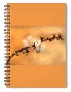 Almond Flowers Spiral Notebook
