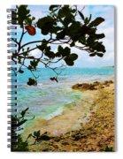 Almond View Spiral Notebook