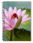 Almost In Full Bloom Spiral Notebook