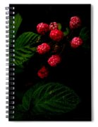 Almost Ripe Spiral Notebook