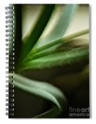 Aloe Spiral Notebook