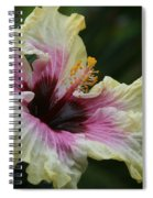 Aloha Aloalo Tropical Hibiscus Haiku Maui Hawaii Spiral Notebook