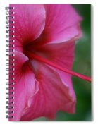 Aloha Aloalo Ulu Wehi Pink Tropical Hibiscus Wilipohaku Hawaii Spiral Notebook