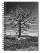 Alone In Minnesota Spiral Notebook
