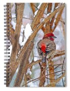 Alone In The Snow Storm Spiral Notebook