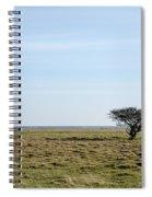 Alone Tree At A Coastal Grassland Spiral Notebook