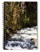 Along American River Spiral Notebook