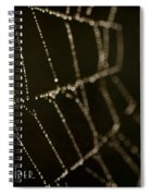 Along Came A Spider Spiral Notebook