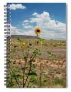 Along Route 66 In Arizona Spiral Notebook