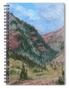 Along South Mineral Creek En Plein Air Spiral Notebook