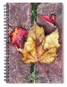 Along The Path  Spiral Notebook