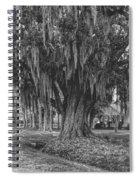 Along The River Road Near Vacherie La Spiral Notebook