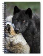 Alpha Couple Spiral Notebook
