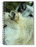 Alpha In The Background Spiral Notebook