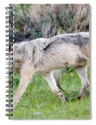 Alpha Wolf On The Move Spiral Notebook