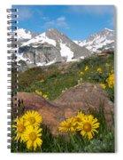 Alpine Sunflower Mountain Landscape Spiral Notebook
