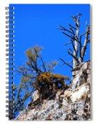 Alpine Wyoming Spiral Notebook