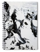Alps In Black And White Spiral Notebook