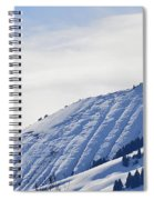 Alps Profile Spiral Notebook