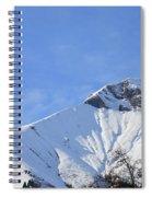 Alps Vista  Spiral Notebook
