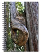 Altered Tree Trunk Growth Spiral Notebook