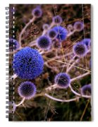 Alternate Universe Spiral Notebook