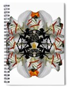 Alternate Universes Spiral Notebook