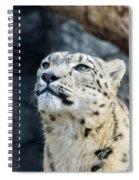 Always Alert Spiral Notebook