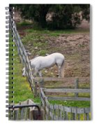 Always Greener On The Other Side Spiral Notebook
