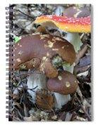 Amanita Muscaria And Edible Boletus Spiral Notebook