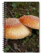 Amanita Muscaria Love...  Spiral Notebook