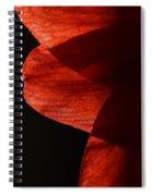 Amaryllis Abstract Spiral Notebook